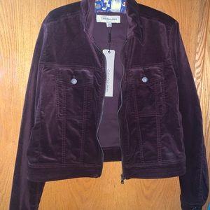 A purple Calvin Klein jacket